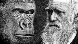 Is er bewijs voor de evolutietheorie van Charles Darwin