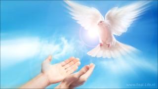 Handen die de vervulling met de heilige Geest ontvangen