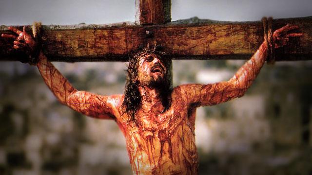 jezus christus lam gods
